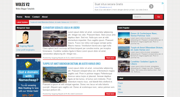 Woles Blogger Template