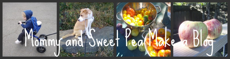 Mommy and Sweet Pea Make a Blog