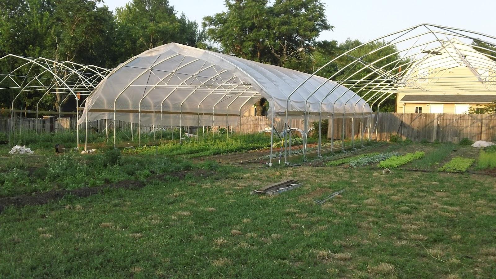 http://4.bp.blogspot.com/-jPHyr01T_2A/T1YkqsVWwiI/AAAAAAAAA5Y/UIWT8hIPXyU/s1600/high+tunnels+2+Urban+Roots+Farm.JPG