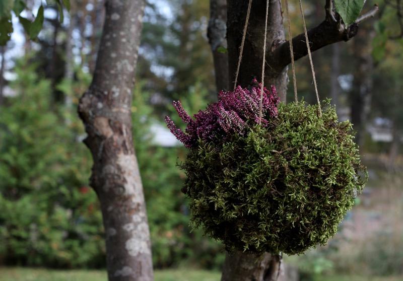 syksyinen kukka-asetelma