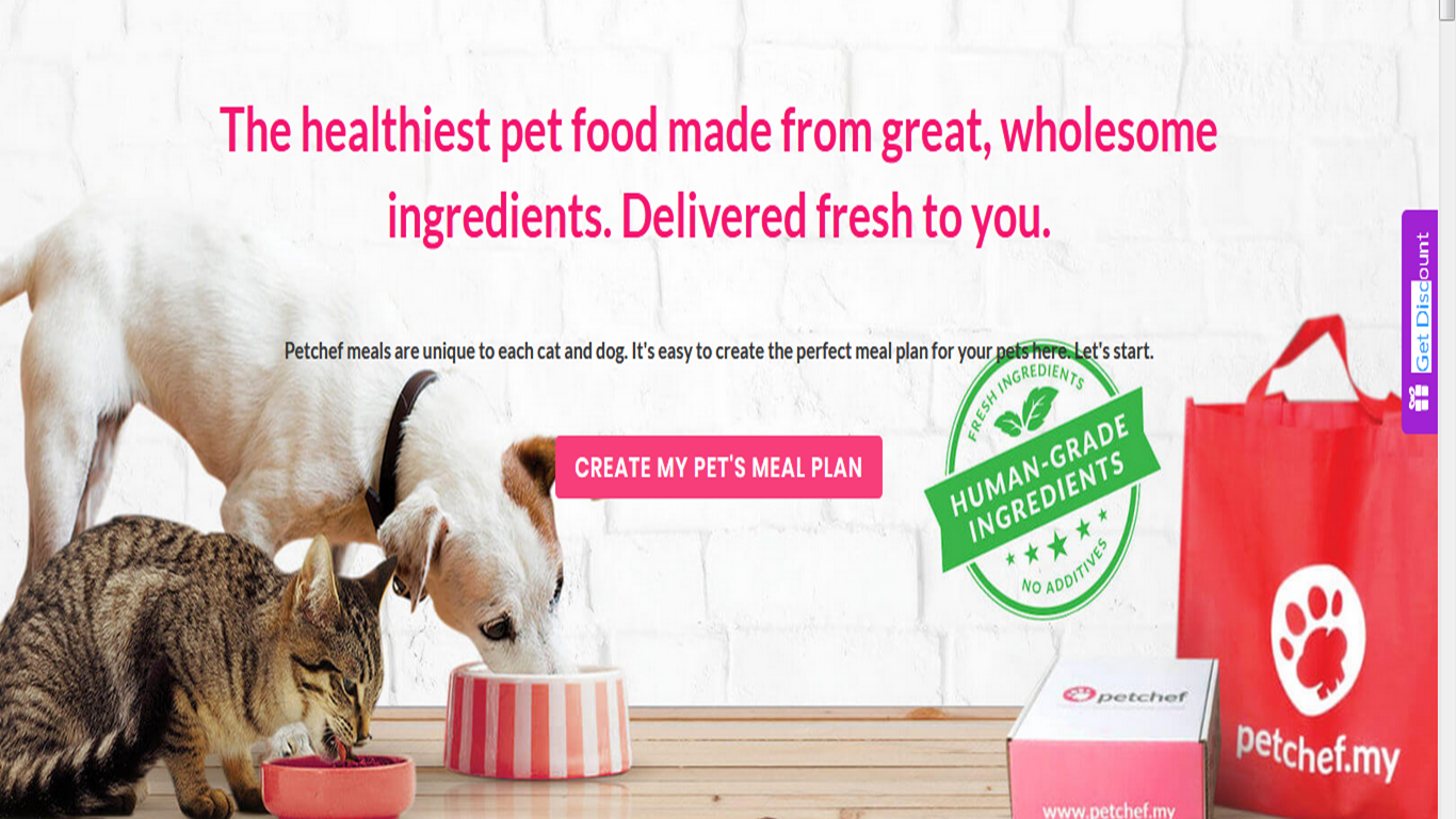 Give your pet REAL and HEALTHY food.