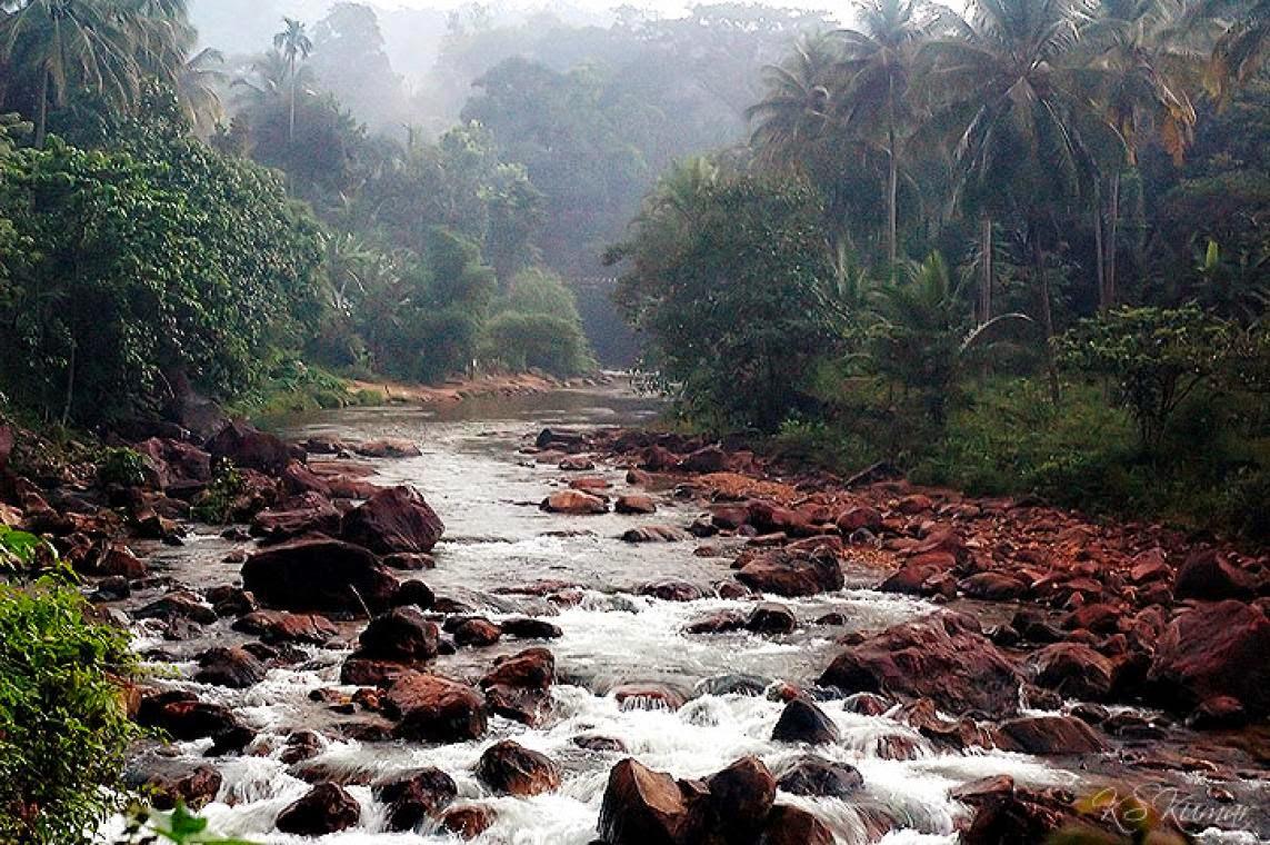 Kerala Ponmudi Tour Packages Bangalore