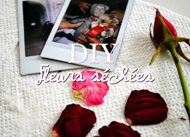 DIY fleurs séchées préssées