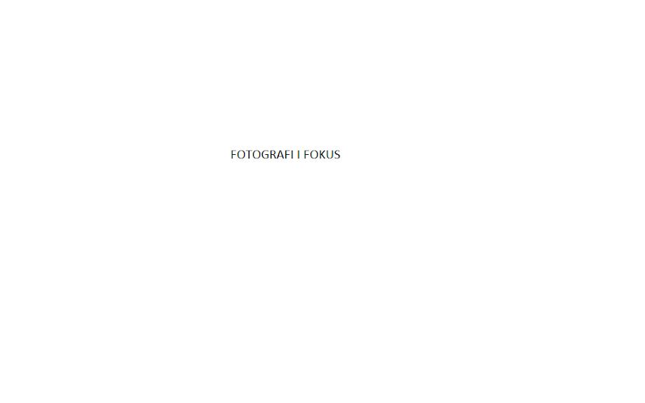 FOTOGRAFI I FOKUS