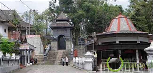 Rumah Eyang Sujo
