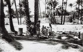 القطرون 1949
