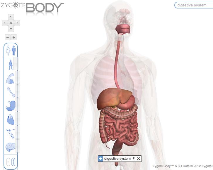 Reciclaje Digit@l: Anatomia en 3D.