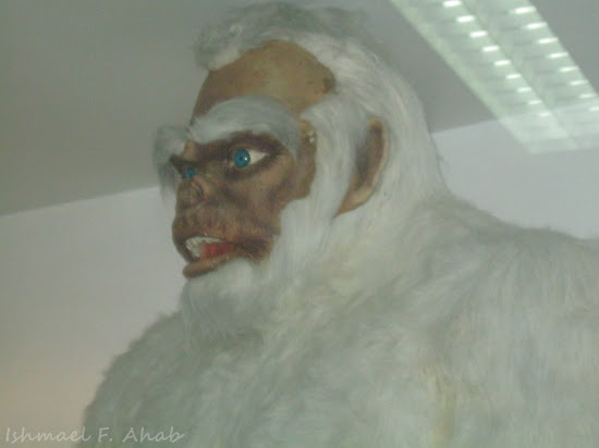 Yeti at Dreamworld Bangkok