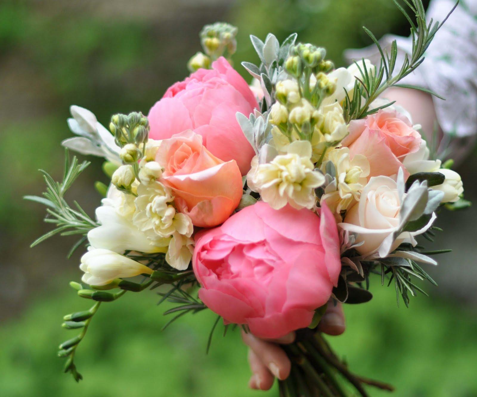 spriggs florist peony coral charm sweet peas delphiniums