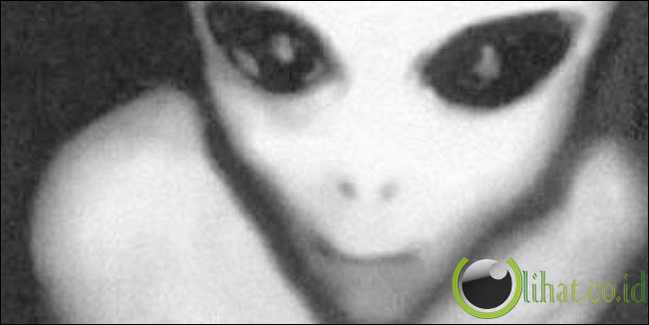 Berkelahi dengan Alien