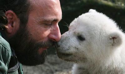 北極熊克努特 4歲的Knut