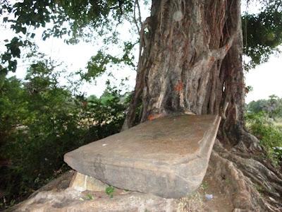 உதயனை யானை போட்ட கல்நெருக்கம்