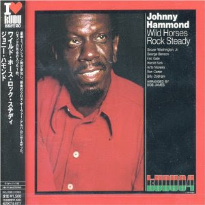 Johnny Hammond - Wild Horses Rock Steady (Soul/Jazz)