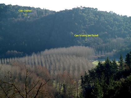 Panoràmica cap a llevant des del Bosc de Can Pararol