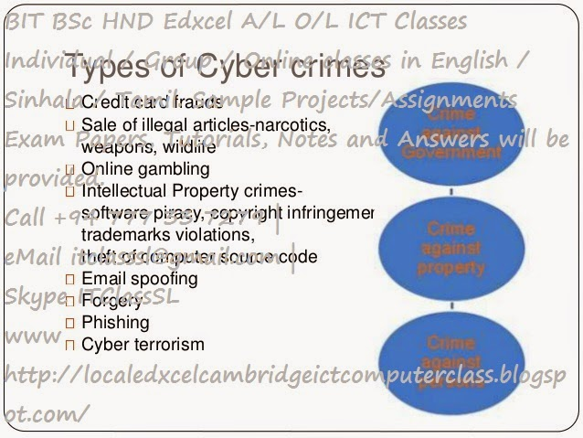 types of crime essay