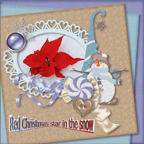 Jan-2016 - Red Christmas star