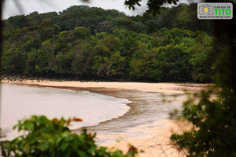 Vegetação e faixa de areia da praia do Vai-Quem-Quer, na ilha de Cotijuba, no Pará
