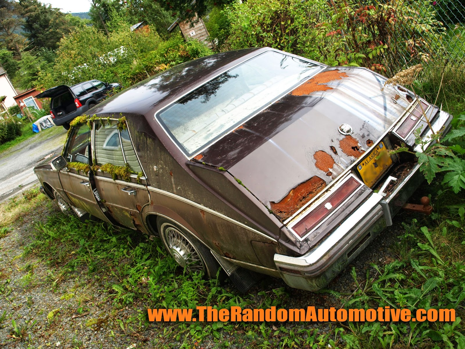 abandoned 1980 cadillac seville sitka alaska rotting in style gm dylan benson