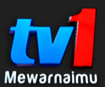 Tv1 Rtm Live Streaming Malaysia|StreamTheBlog - Free Tv Radio Streaming Online