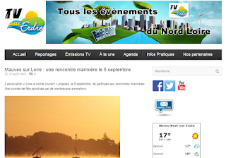 Annonce concert BogZH Celtic Cats ! à Mauves sur Loire - TV sur Erdre
