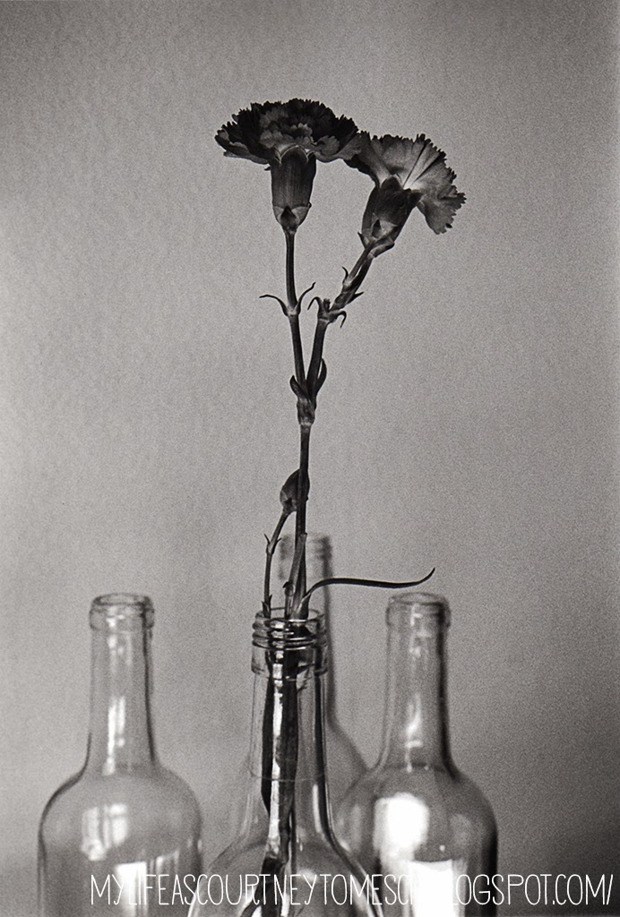 Black and White Photography Wine bottle Flower