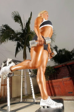 Shawn Rene Zimmerman Celebrity Health Fitness Expert