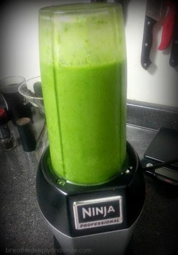 nutri-ninja-1