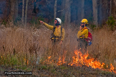 Controlled burn to take place today in Cades Cove Section of Great Smoky Mountains National Park