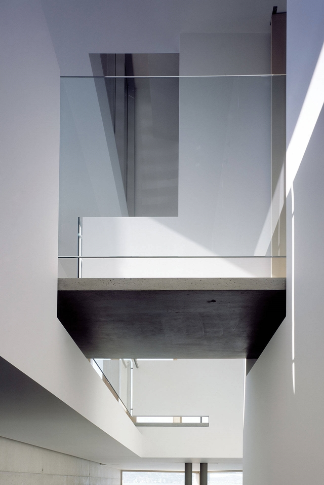 Skybridge in the Shaw House