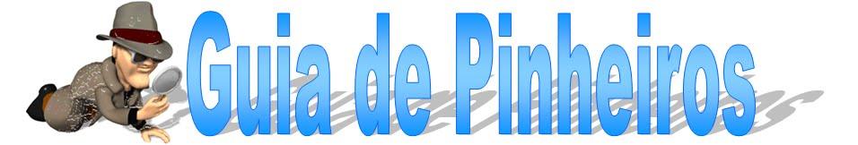 Guia de Pinheiros SP