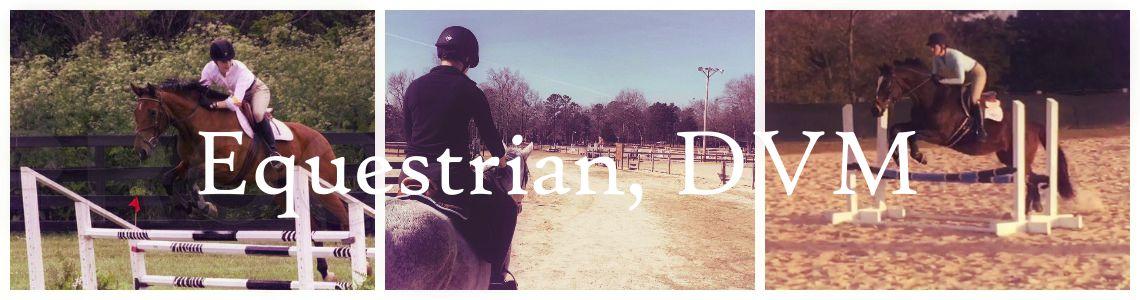 Equestrian, DVM