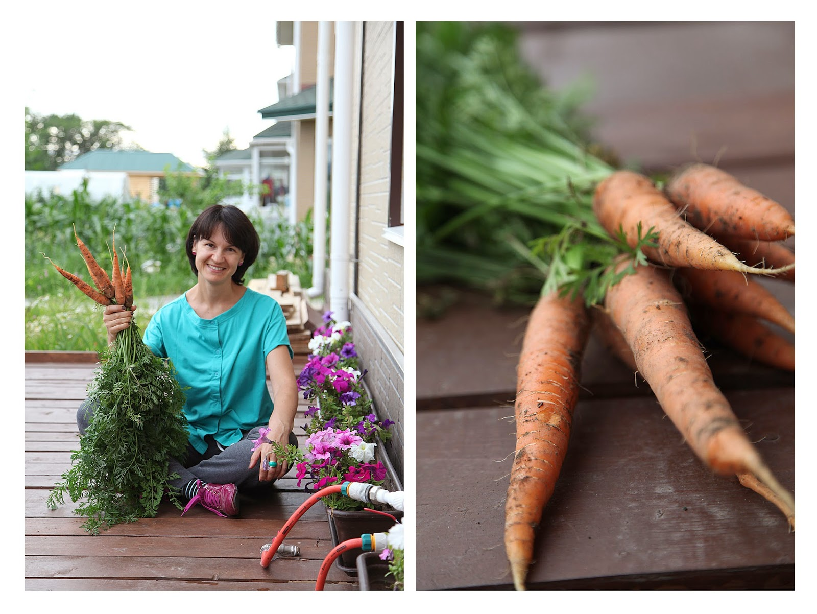 фото с морковкой