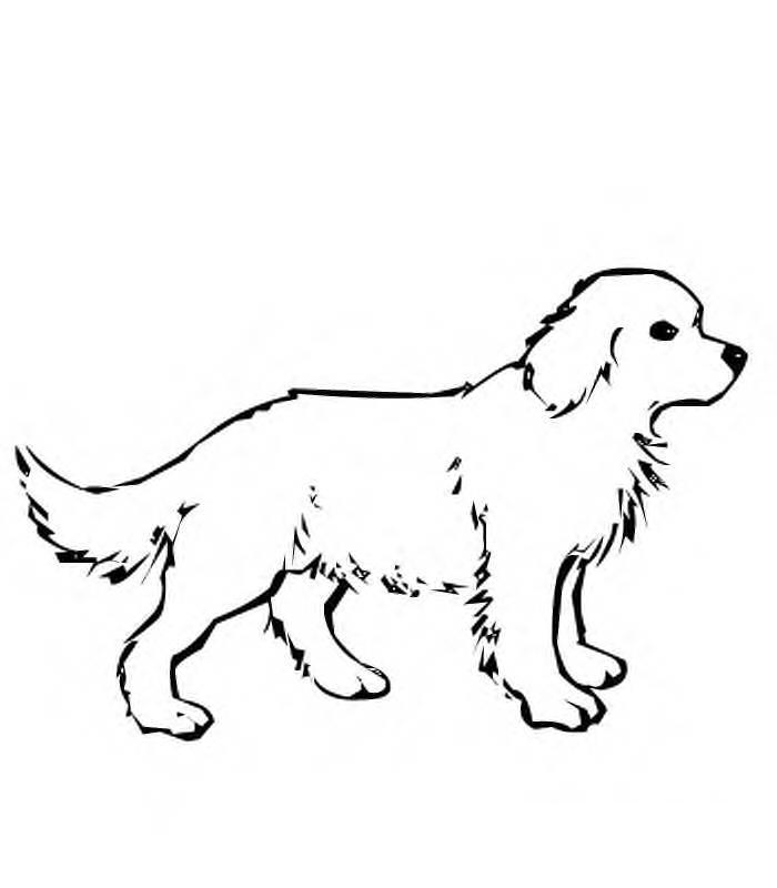 desenhos de cachorros para colorir cachorrinhos para pintar