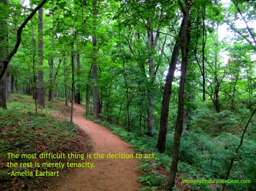 The most difficult thing is the decision to act, the rest is merely tenacity. –Amelia Earhart