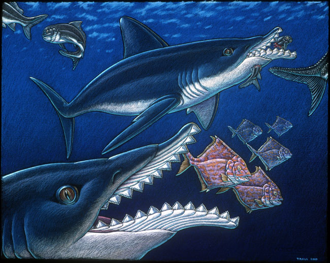 Top 10 des dinosaures aussi terrifiants que m connus - Dinosaure marin carnivore ...