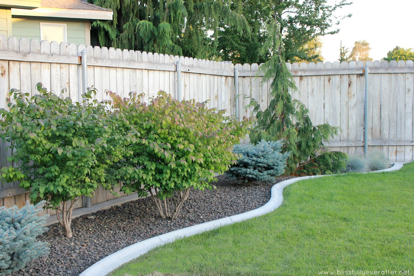 Inexpensive backyard garden ideas photograph blissfully ev for Low budget landscaping ideas