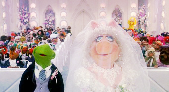 Muppetshenson Poll Question What Are Your Feelings Towards A Possible Wedding Of Kermit And Miss Piggy Again