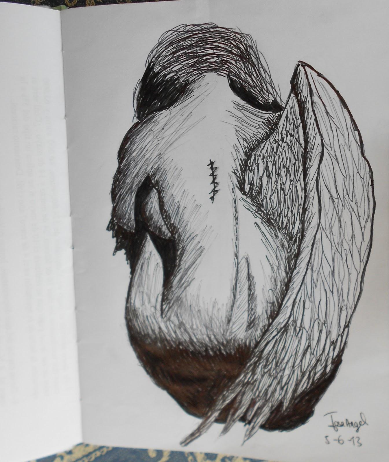 ngel sin alas  los dibujos de jose angel barbado