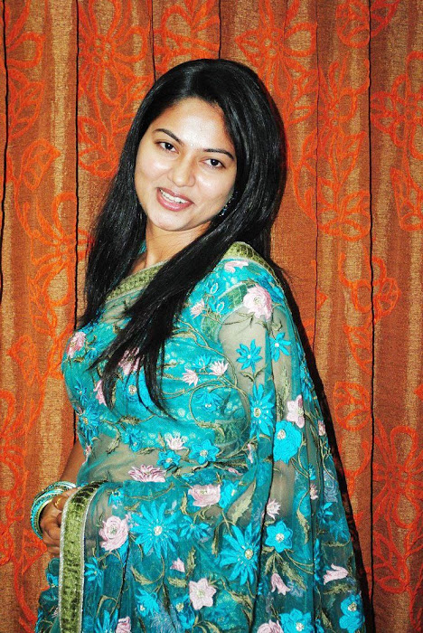 suhasini saree suhasini transparent saree hot images