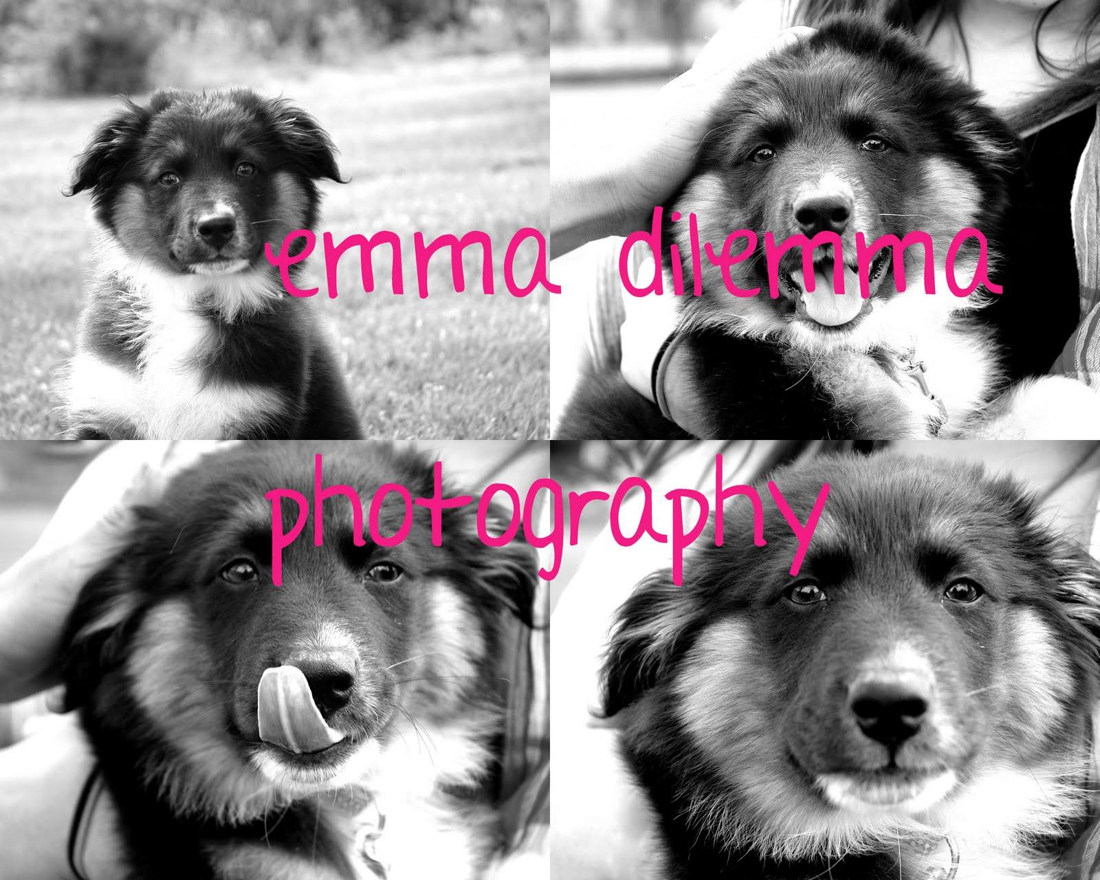 emma dilemma photography