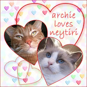 Archie and his Ladycat Neytiri