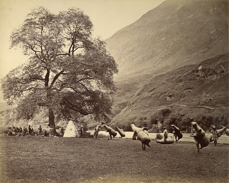 Mussucks at the banks of the Beas river in Kullu valley, Himachal Pradesh - 1865