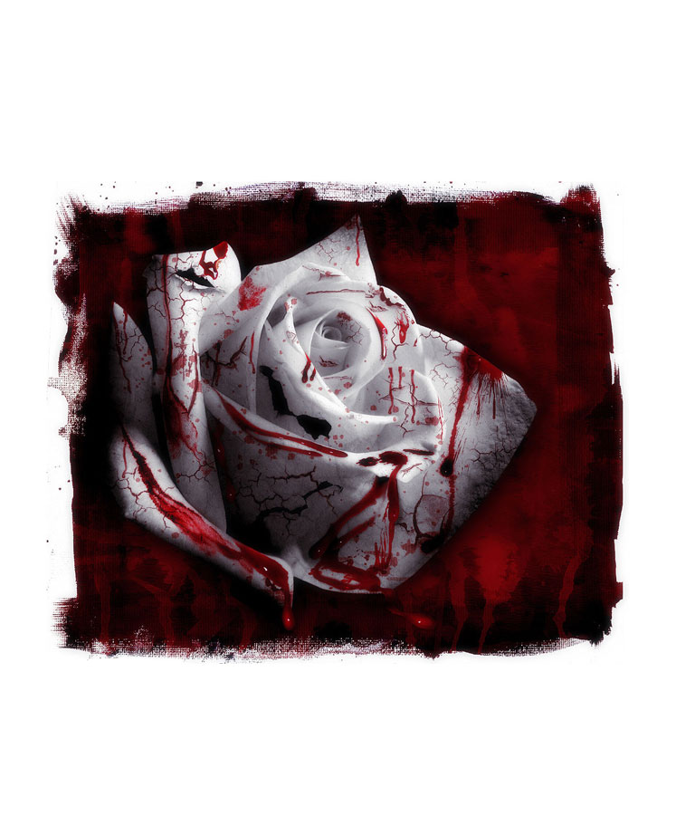 A Rosa que Floresce do Sangue