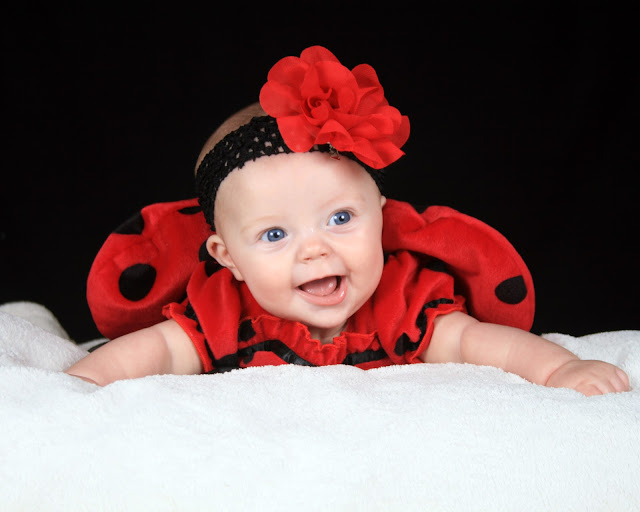 baby girl, halloween, child halloween, ladybug costume,