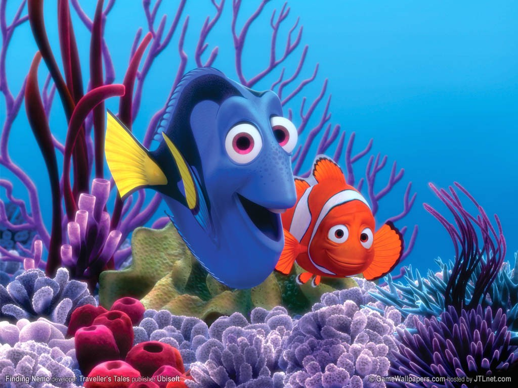 los peces: los peces