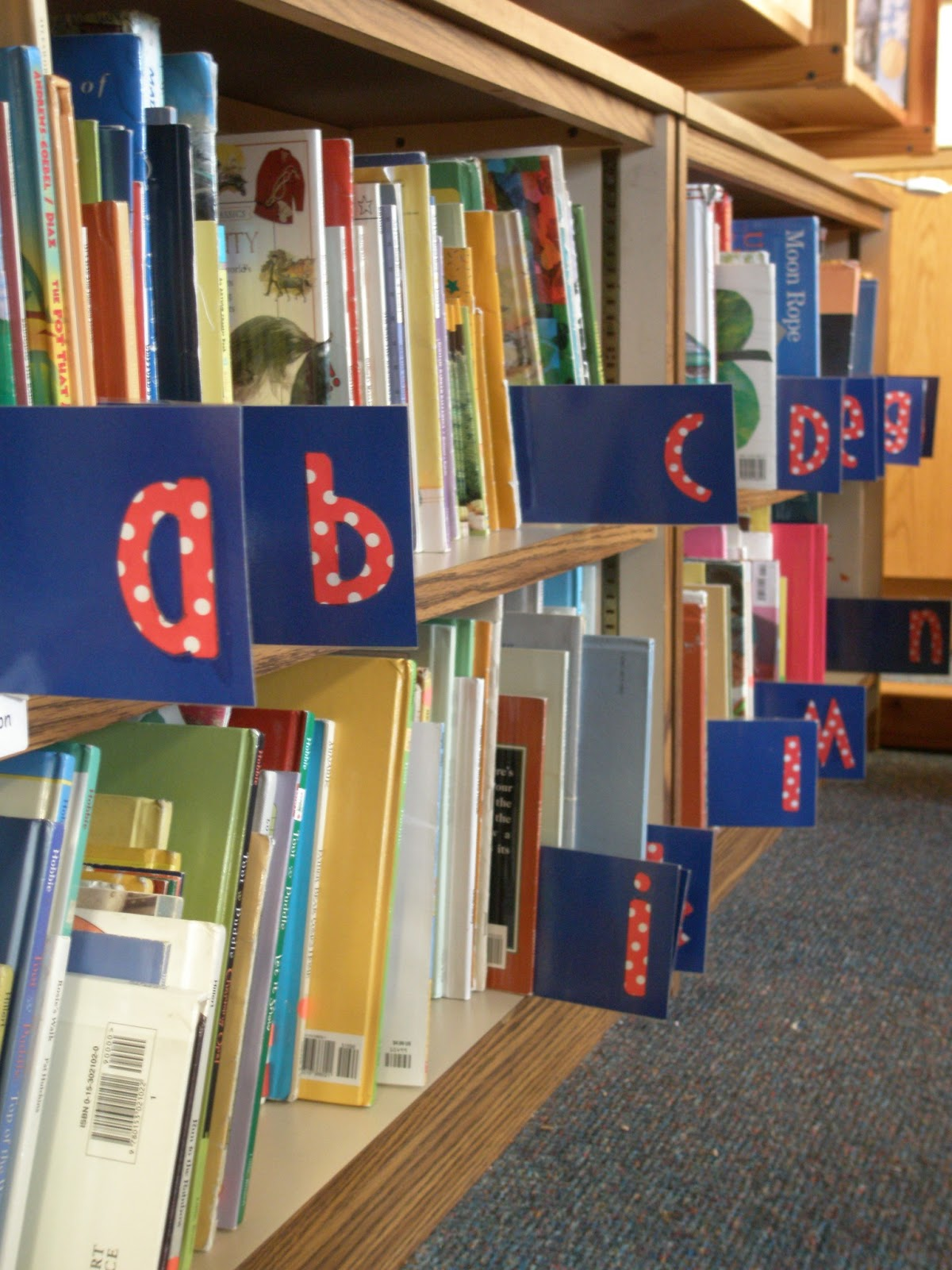 Elementary Organization School Projects