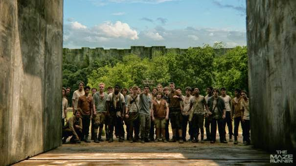 Pemain The Maze Runner 2014