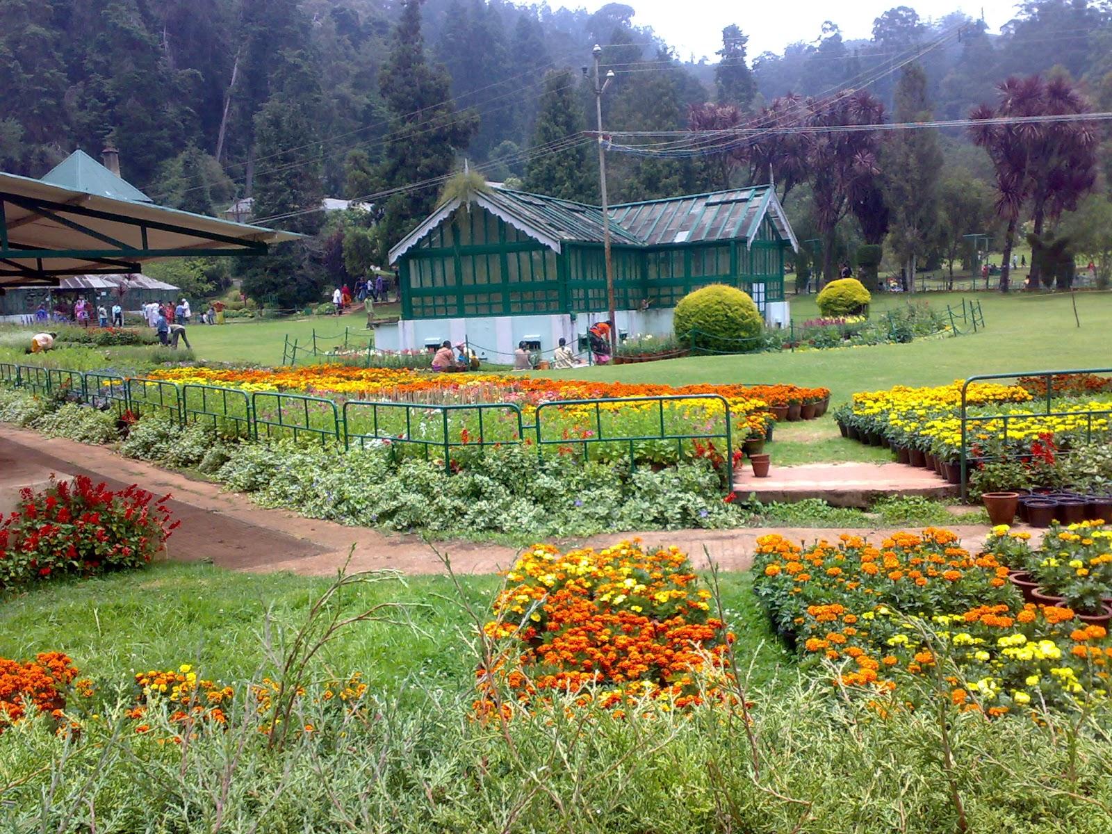 Botanical Garden Ooty India