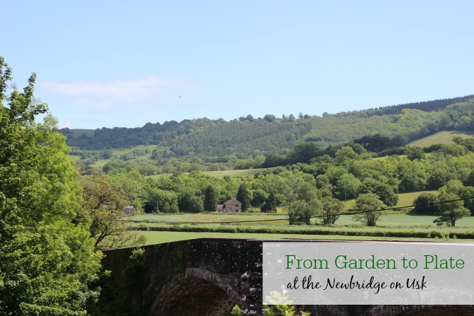 From garden to plate at the Newbridge on Usk