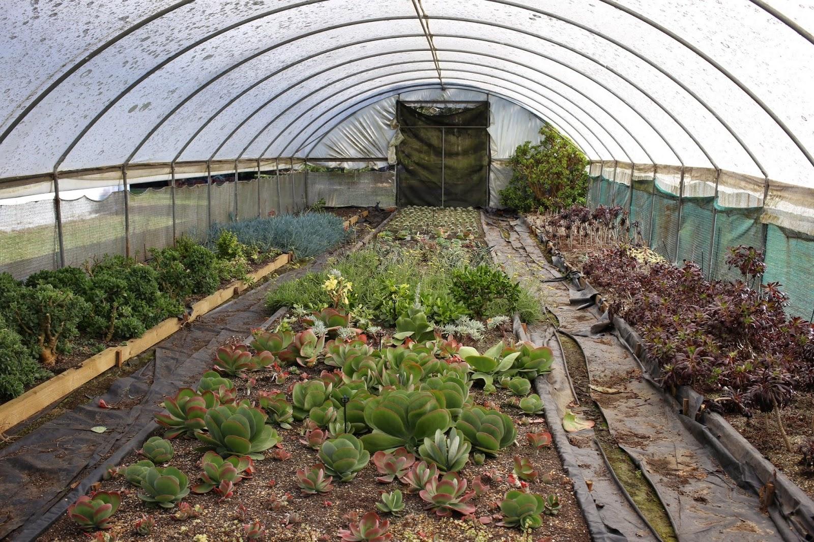 Jardine Botanic